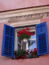 Window in Sibiu