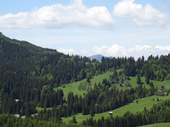 The Carpathian Mountains, Romania