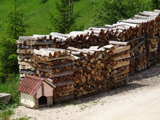 Woodpile in Romania