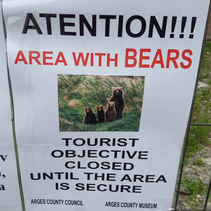 Castle closed due to very orderly line of bears