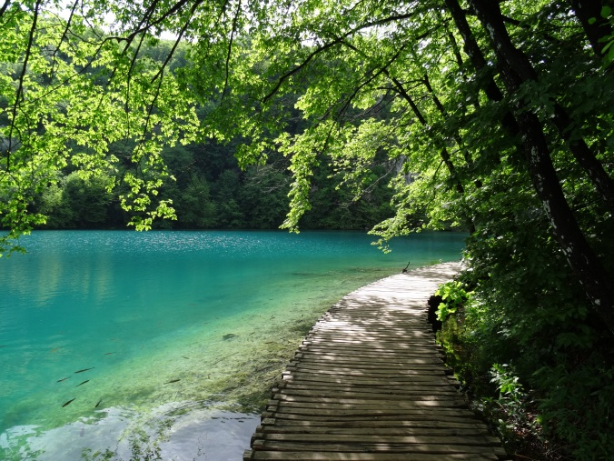 Boardwalk, lake and fish, Plitvice National Park