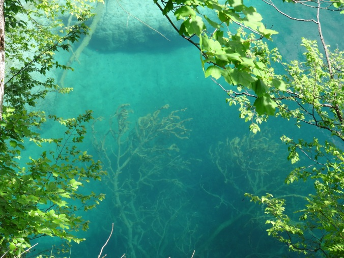 Unbelievably clear water in Plitvice upper lakes