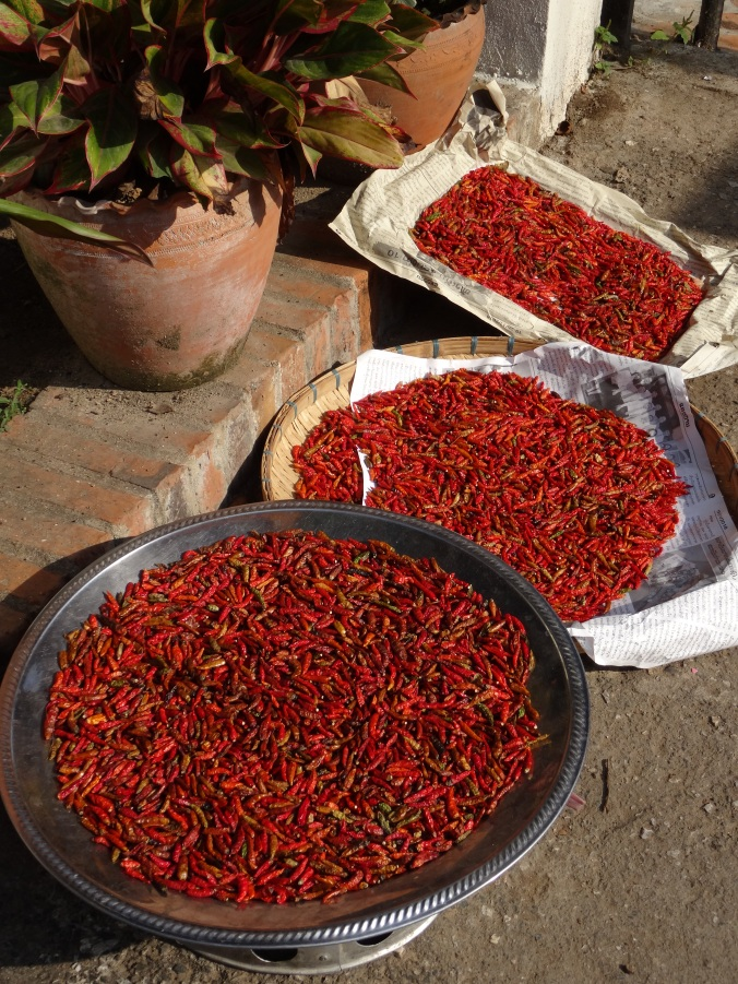 Chillies for sale in the market, Luang Prabang